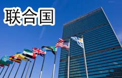 Working at the United Nations