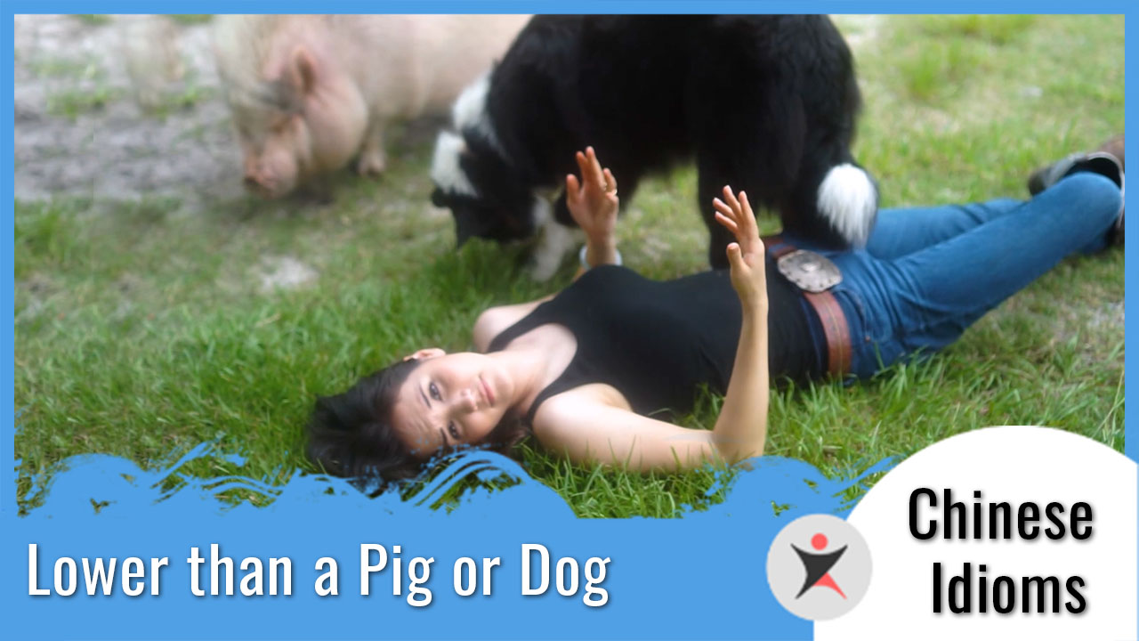Chinese Idioms - Lower than a pig or dog