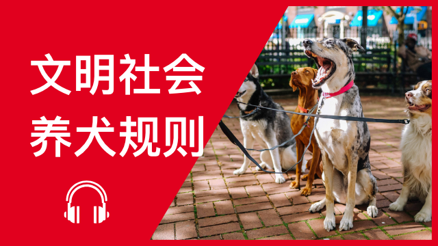 Social credit score for China's pet owners 文明社会 养犬规则