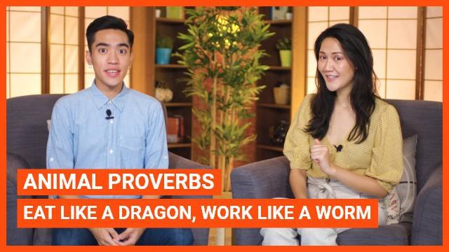 Animal Proverbs: Eat like a dragon, work like a worm