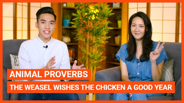 Animal Proverb: The weasel wishes the chicken a good year