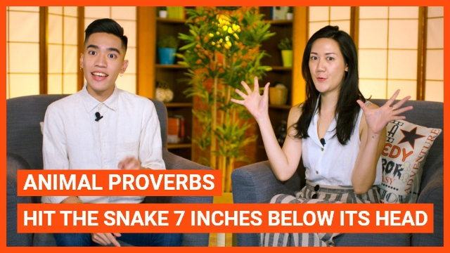 Animal Proverbs - Hit the snake 7 inches below its head