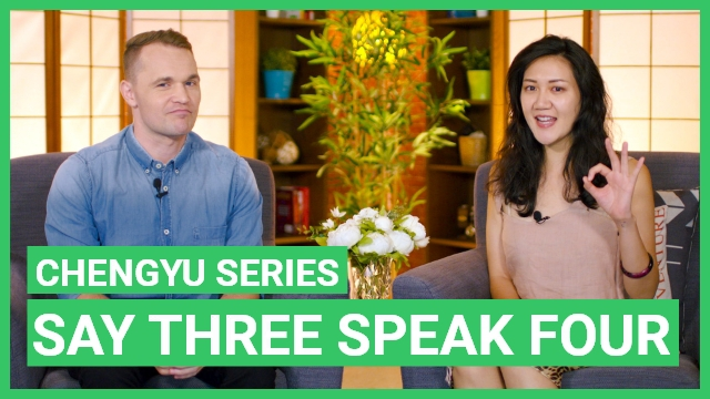 Chengyu Series - Say three speak four