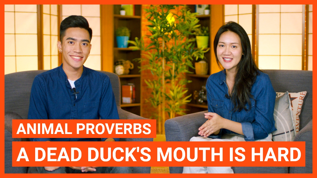 Animal Proverbs: A dead duck's mouth is hard