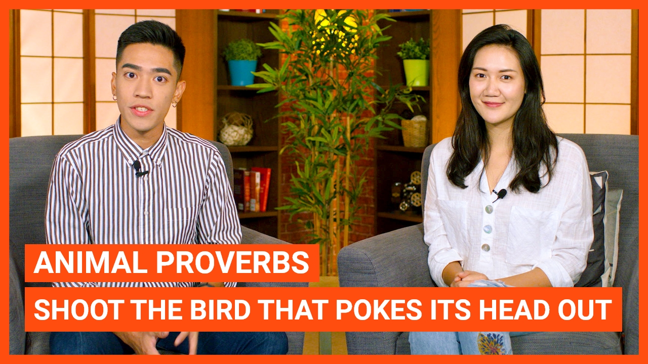 Animal Proverbs: Shoot the Bird That Pokes Its Head Out
